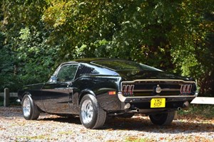 used Ford Mustang Fastback 302ci